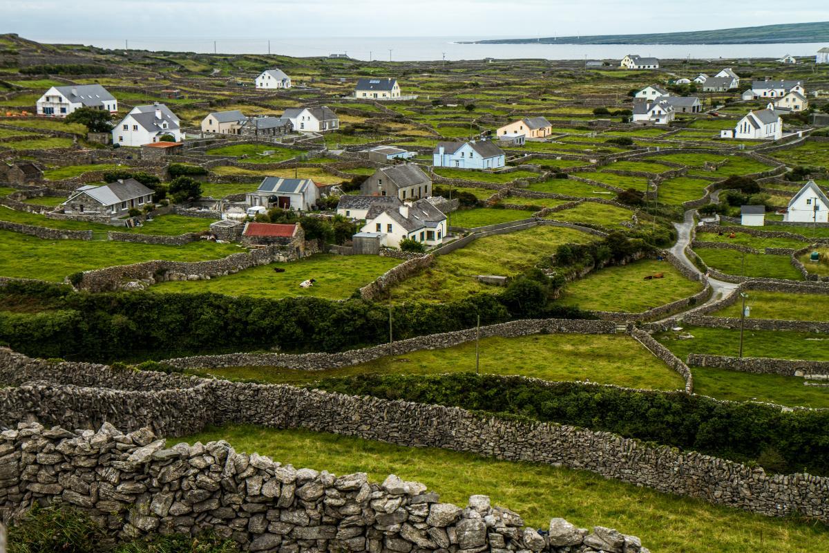 Ирландия хочет создать в деревнях центры 'удаленки', чтобы возвращать жителей