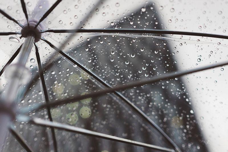 Жара сменится прохладой: на Кубань обрушатся ливни и шквалистый ветер