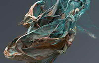 Госдума: за жалобой РФ к ЕСПЧ может последовать обращение в ОЗХО