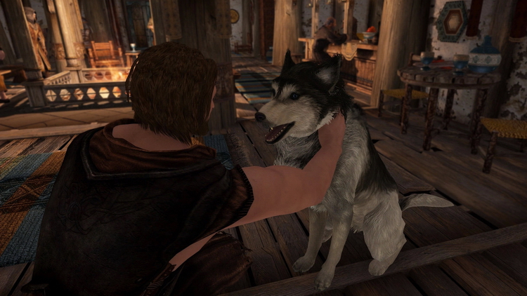 Новый мод для The Elder Scrolls V: Skyrim наконец-то дал игрокам гладить собак
