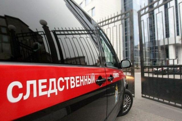 Суррогатную мать по делу о торговле детьми в Москве объявили в розыск