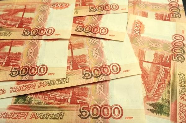 Счетная палата: госдолг РФ за 2020 год вырос на 39,9%