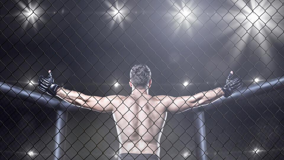 Чинили сантехнику, продавали кексы: Кем раньше были звезды бокса и MMA