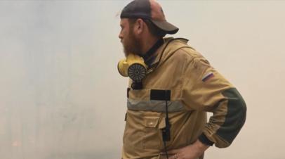 В России за сутки ликвидировали 103 лесных пожара