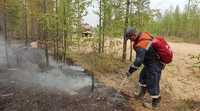Вильфанд сообщил, когда ситуация с лесными пожарами в Якутии улучшится
