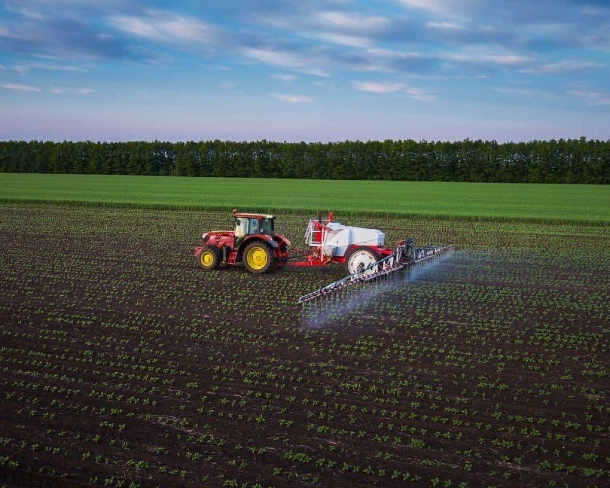 Блокирование инновационных средств защиты растений стоило Украине около 5% ВВП