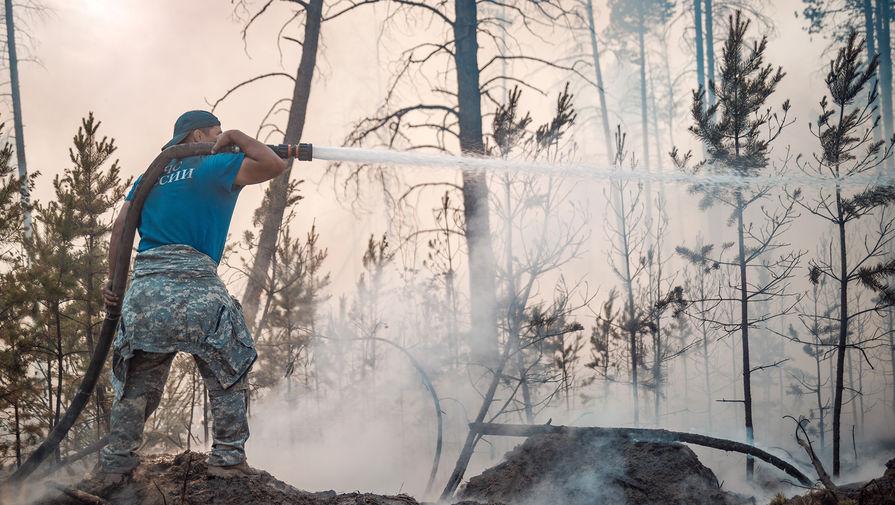 В Гидрометцентре рассказали, когда прекратятся лесные пожары в Якутии