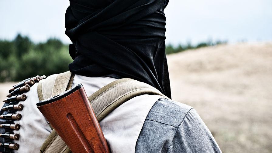 В 'Талибан' заявили, что контролируют около 90% границ Афганистана