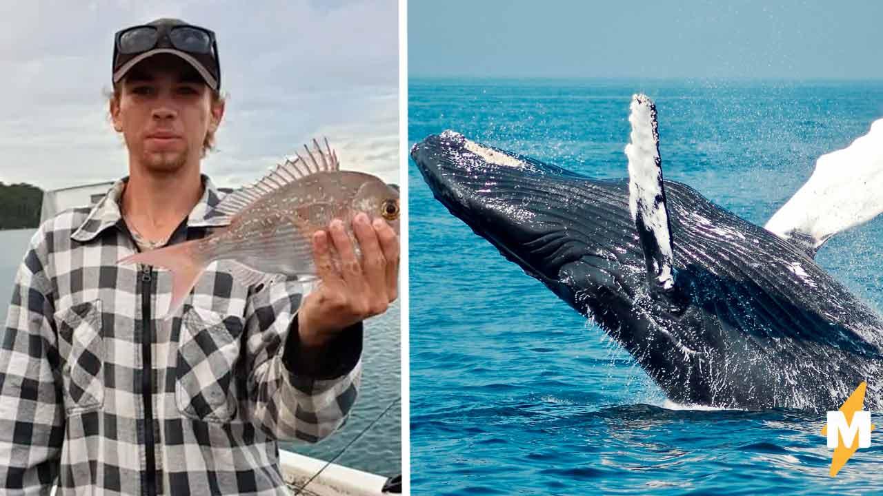 Рыбак ждал улов, но достал удочку не в том районе. Теперь он знает, что кит может отвесить леща (и какого)