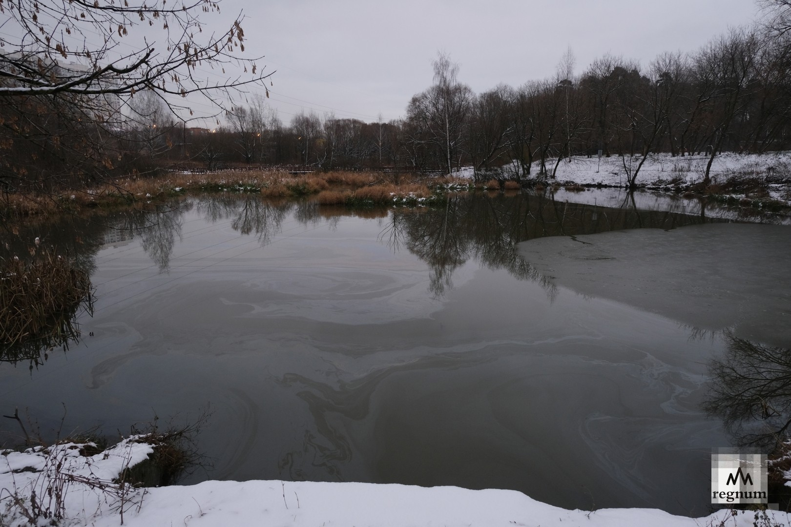 В Лосиноостровском районе Москвы произошла утечка нефтепродуктов — фото