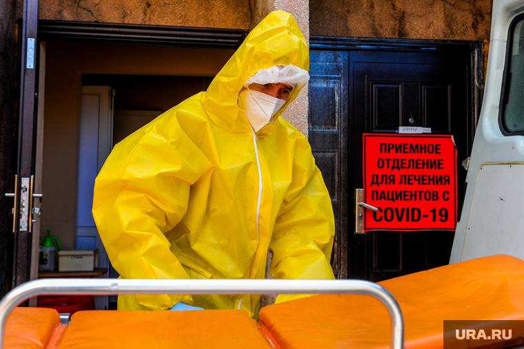 Коронавирус: главные новости 30 июня. COVID-19 мог убить почти 4 млн россиян, в РФ нашли более сотни видов вируса