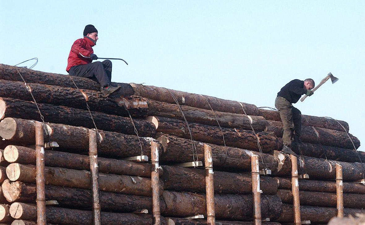 Крупнейший экспортер леса в Китай назвал причину криминализации отрасли