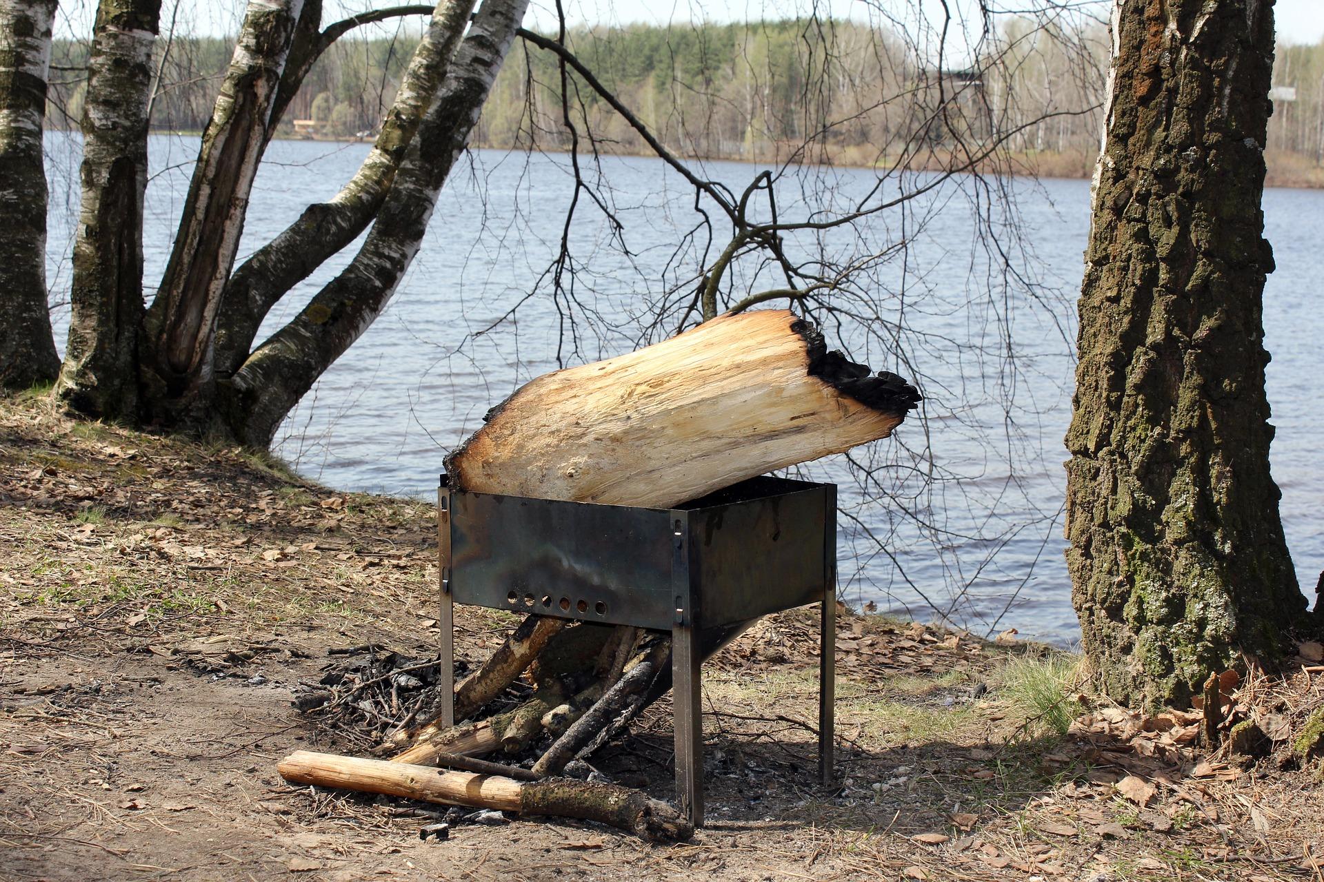 Россиянам дали советы, как не спалить лес из-за шашлыков