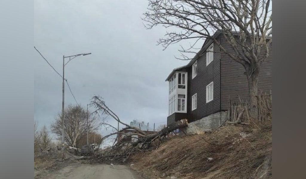 Сорванные крыши, поваленные деревья: на Петропавловск-Камчатский обрушился ураганный ветер